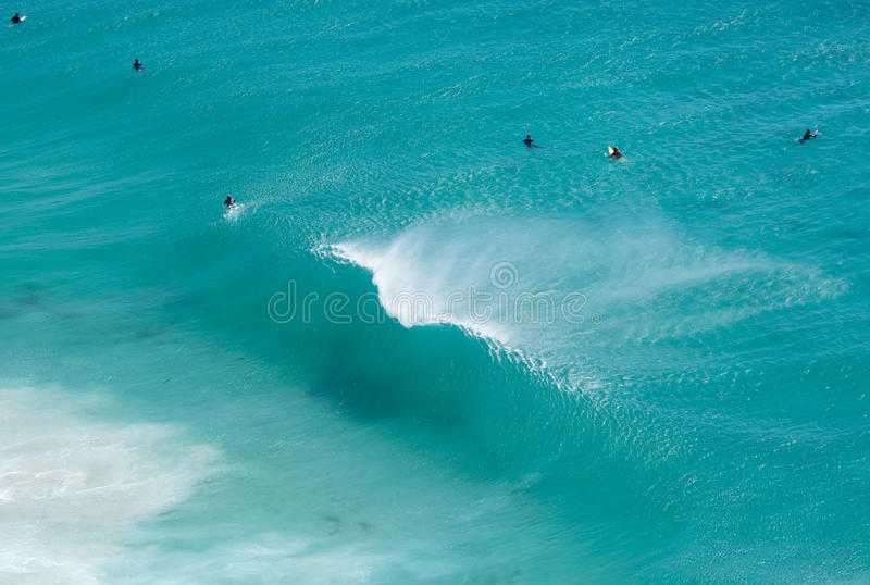 碎波的开普敦冲浪者 免版税图库摄影