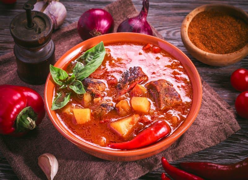 碗匈牙利墩牛肉和成份 免版税库存照片