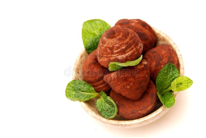 碗巧克力来回块菌 免版税库存照片