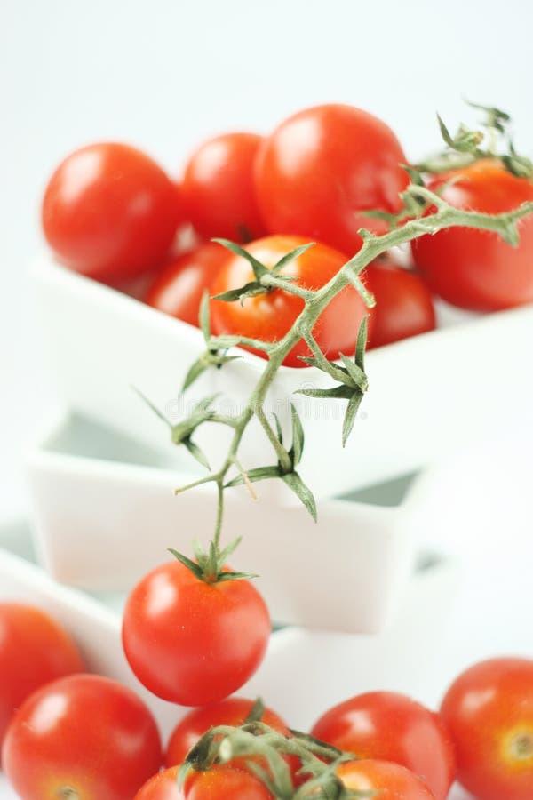 碗新鲜的方形蕃茄 免版税库存图片