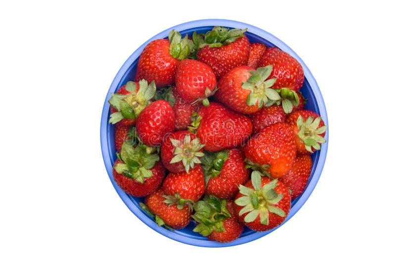 碗新鲜的草莓 库存图片