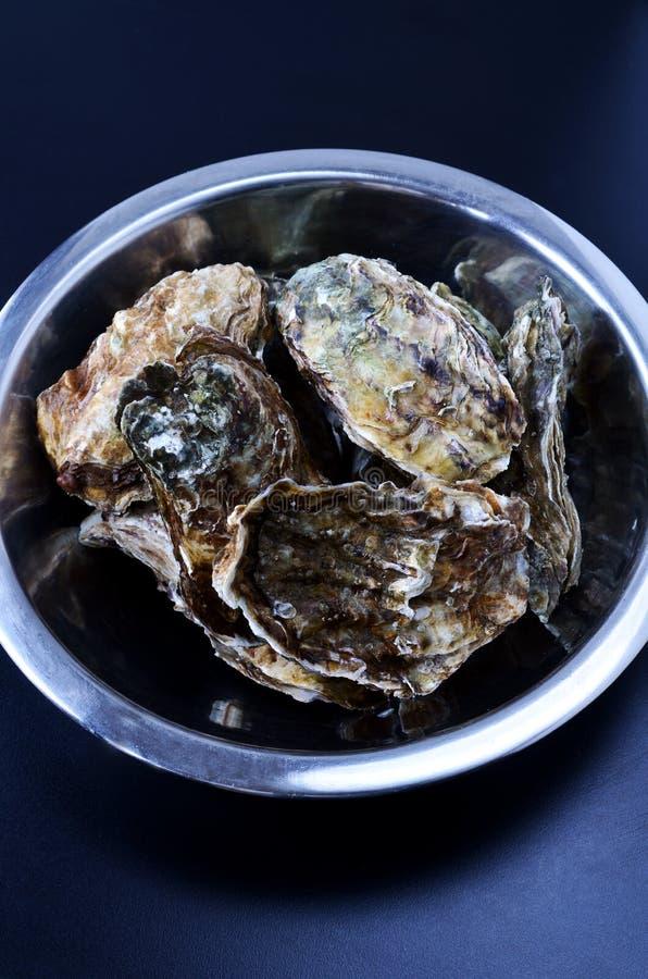 碗牡蛎 库存照片