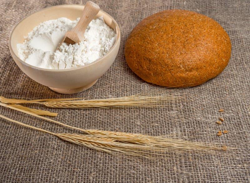 碗用麦子的面粉和耳朵 图库摄影