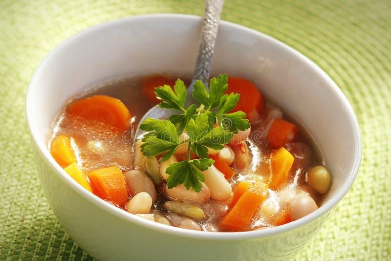 碗白豆汤用荷兰芹 库存照片