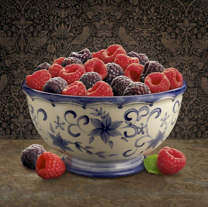 碗莓 免版税图库摄影