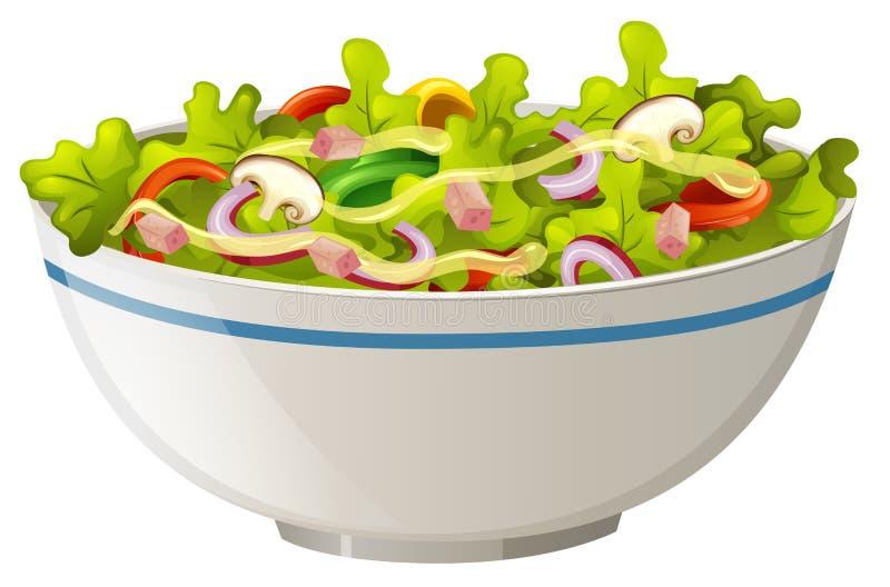 碗蔬菜沙拉 库存例证