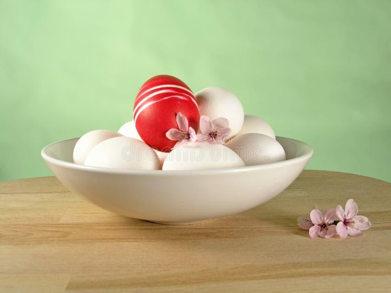 碗鸡蛋 免版税图库摄影