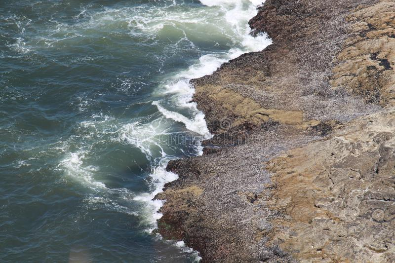 碰撞入岸的波浪 库存图片
