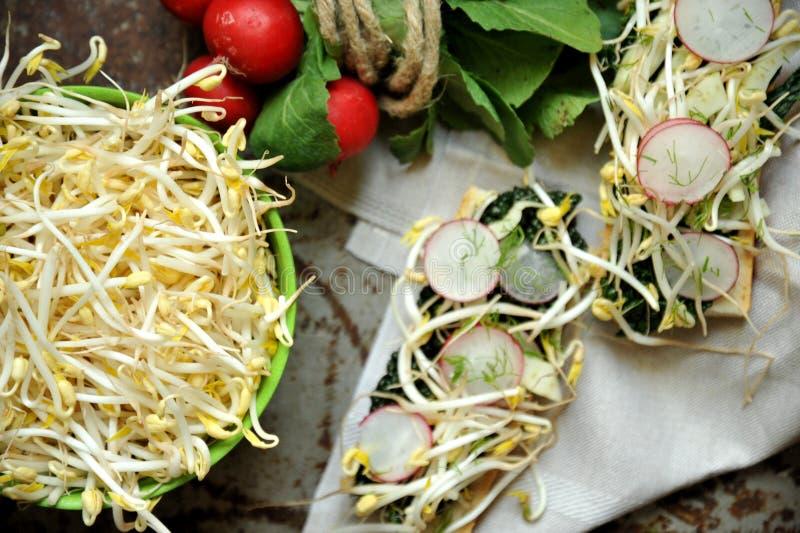 碱性,健康食物:大豆新芽用萝卜和无头甘蓝 免版税库存照片
