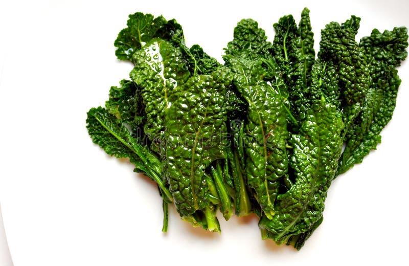 碱性,健康食物: 在白色返回的无头甘蓝叶子 图库摄影