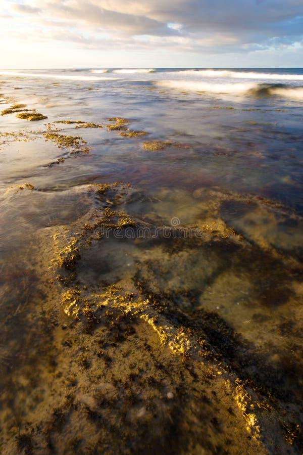礁石通知 免版税库存图片