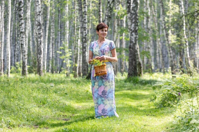 礼服的一年轻女人收集蘑菇,在篮子的莓果 收获在有蕨的桦树森林里 免版税图库摄影