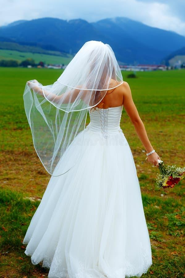 礼服的新娘有从她面对山风景的面纱的与婚礼花束在她的手上 免版税库存图片