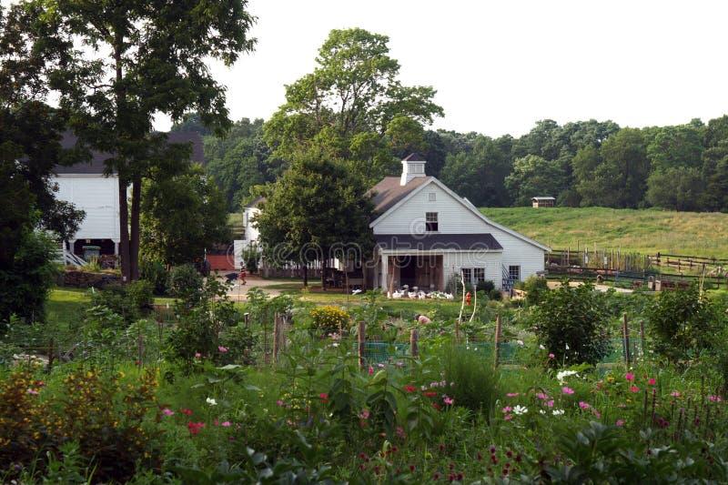 社区农厂庭院 库存照片