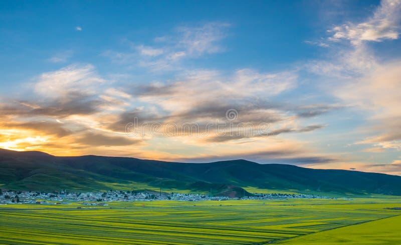 祁连山山在夏天 库存图片
