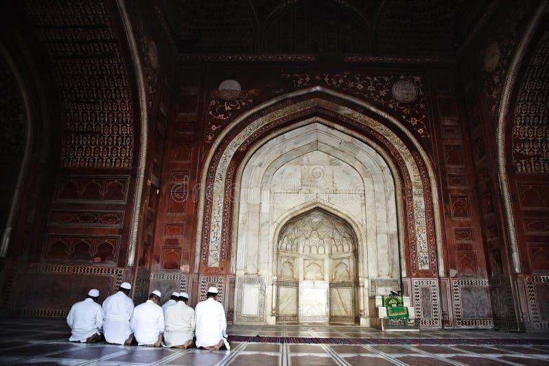祈祷在清真寺,泰姬陵,阿格拉,北方邦的回教人 免版税库存图片