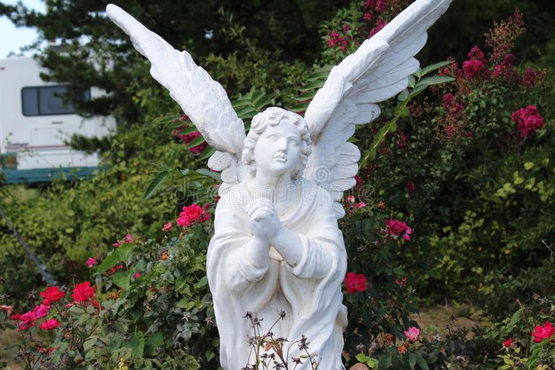 祈祷的天使 库存图片