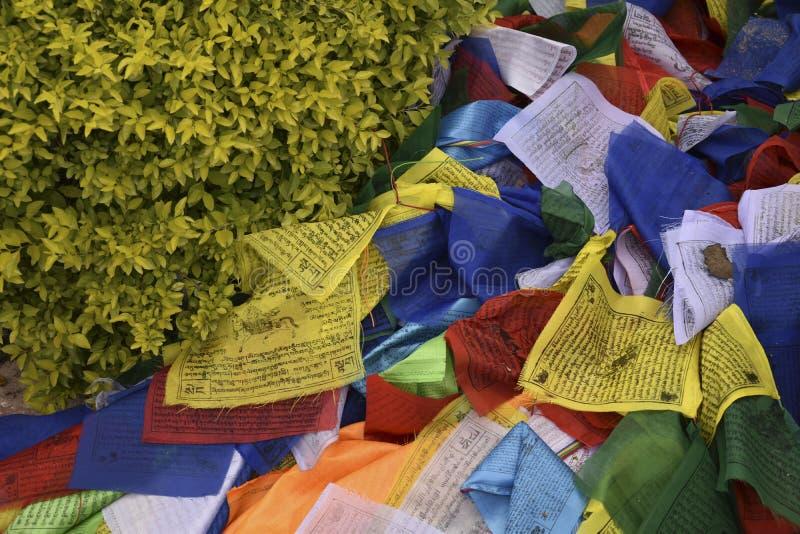 祈祷的旗子在尼泊尔 库存图片