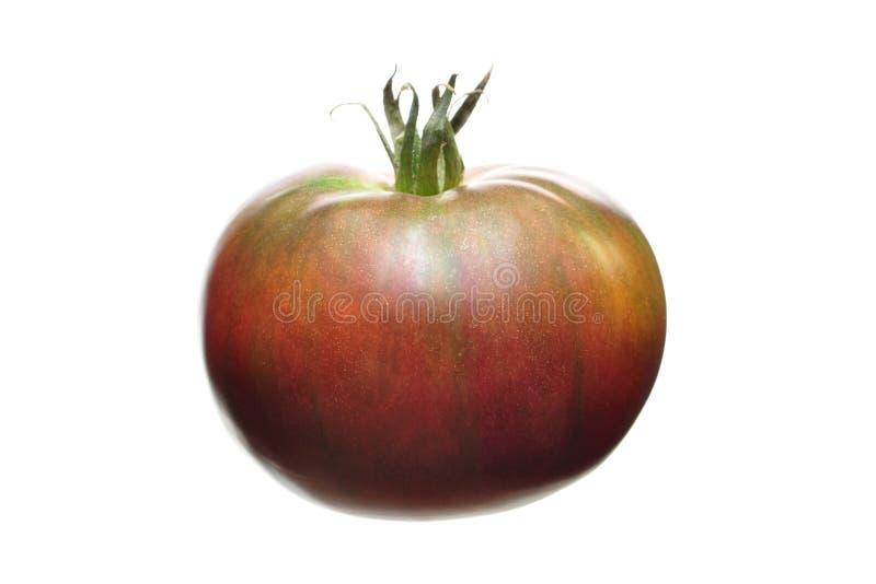 祖传遗物蕃茄 免版税库存照片