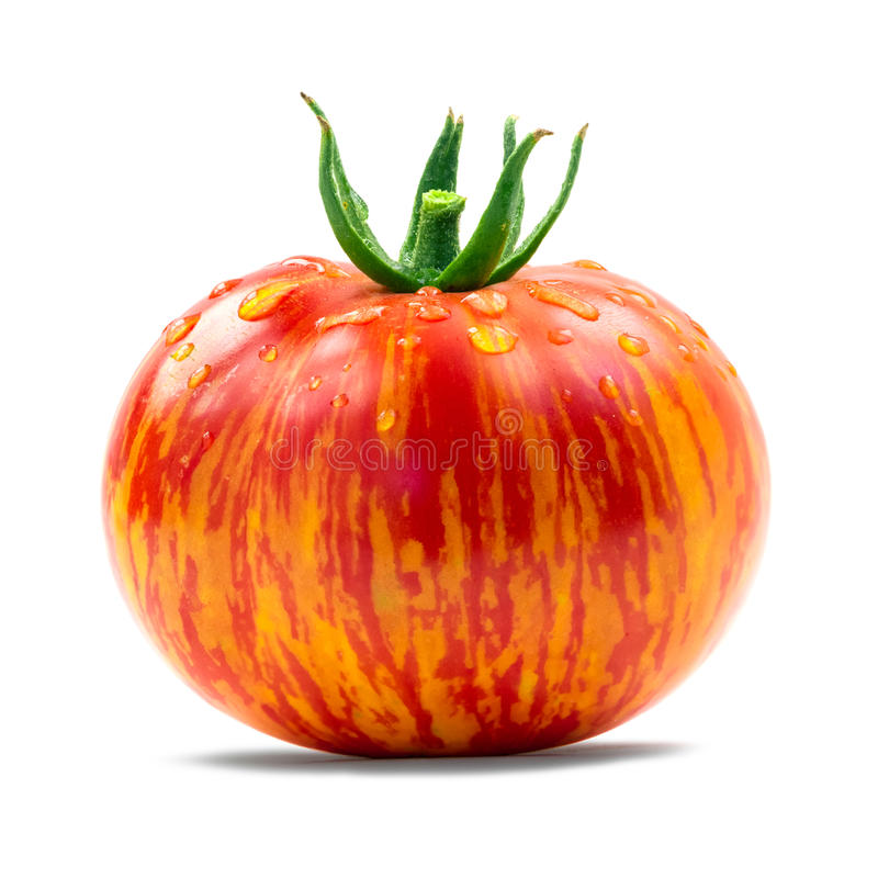 祖传遗物蕃茄 免版税库存图片