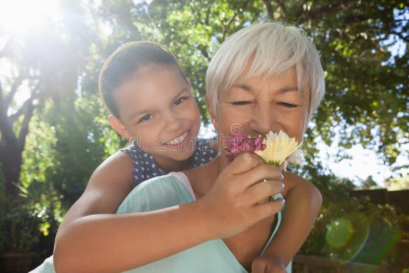 祖母嗅到的花,当扛在肩上孙女时 库存图片