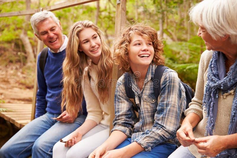 祖父母和十几岁坐桥梁在森林里,侧视图 免版税库存图片
