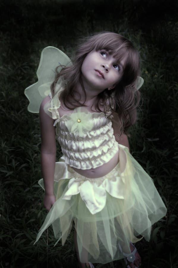神仙的公主 库存照片