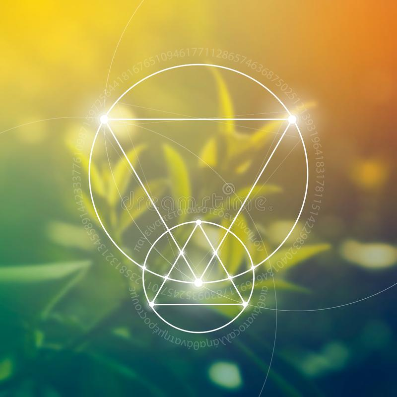 神圣的几何 数学、自然和灵性本质上 自然惯例  免版税图库摄影