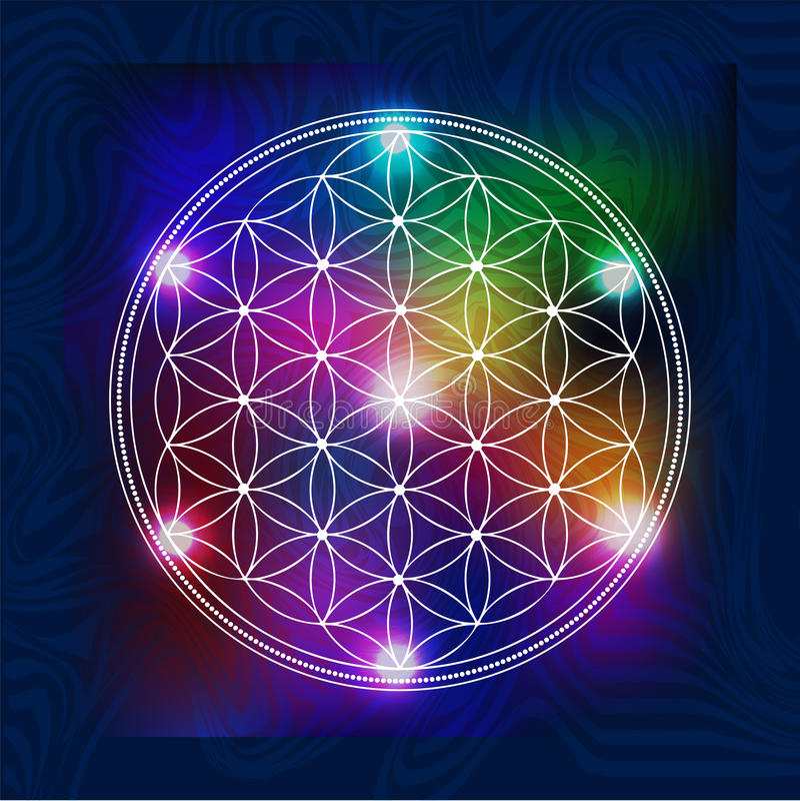 神圣的几何5 向量例证
