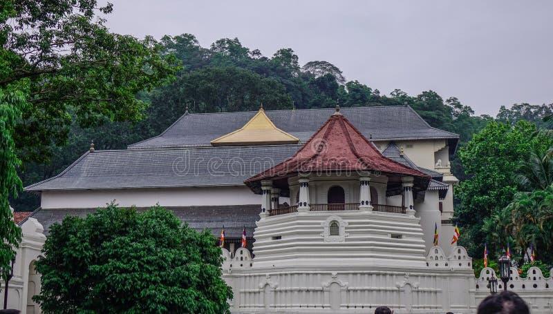 神圣的牙遗物寺庙在康提,斯里兰卡 免版税库存照片