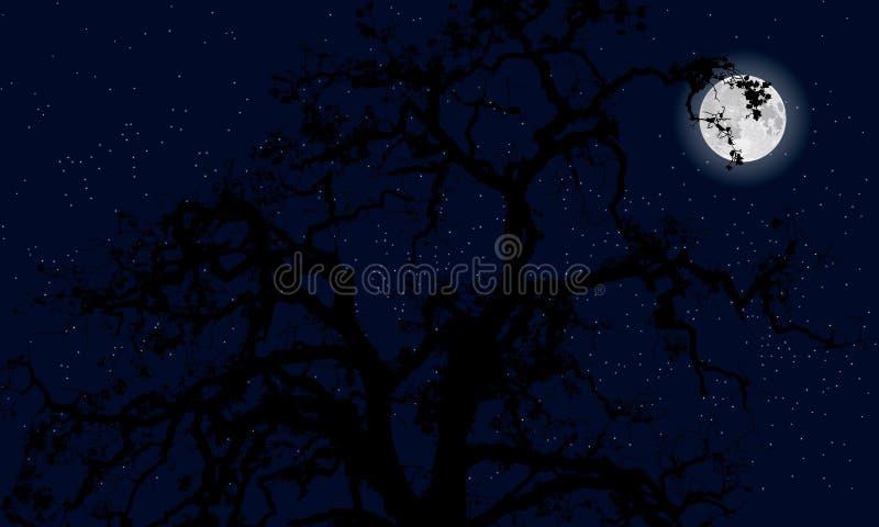 神奇月亮 库存照片