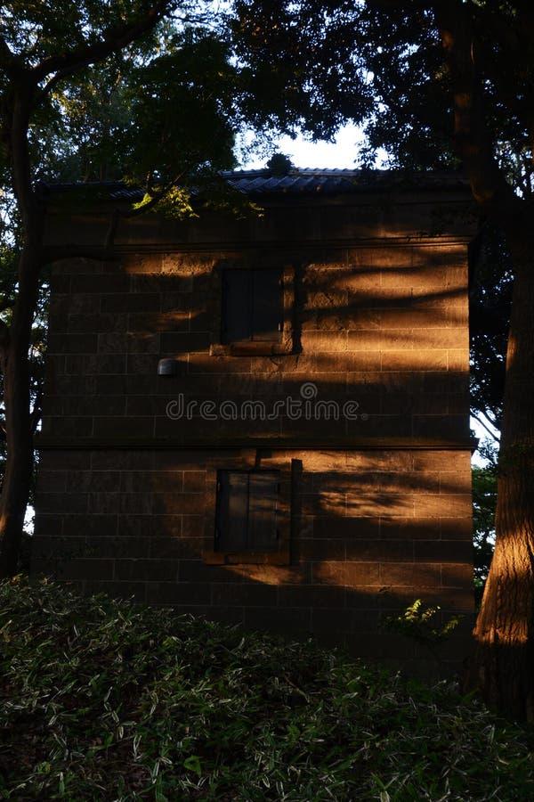 神奇老房子在森林里 免版税库存照片