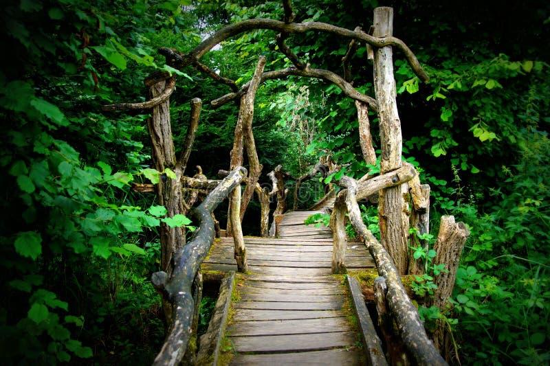 神奇鬼的木板走道森林入口 免版税库存照片