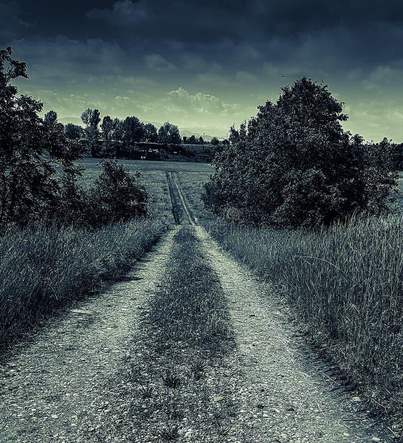 神奇黑暗的街道 库存照片