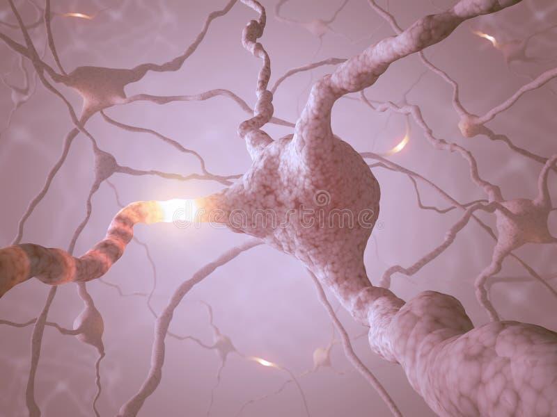 神经元概念 皇族释放例证