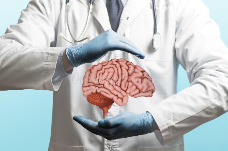 神经外科学 对待脑子 库存照片