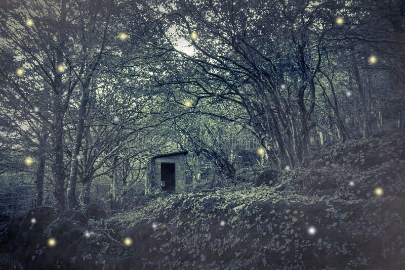 神仙在木头安置 免版税库存照片