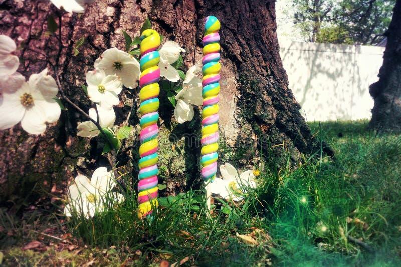 神仙的糖果庭院 库存图片