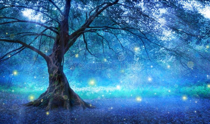 神仙的结构树 库存照片
