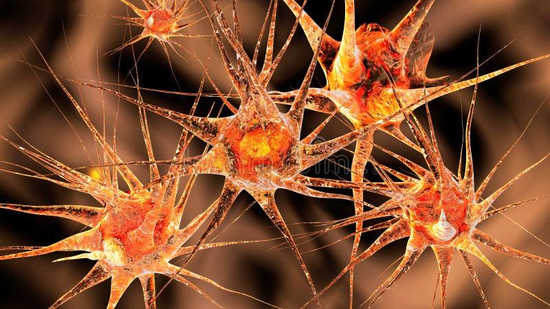 神经细胞的网络 皇族释放例证