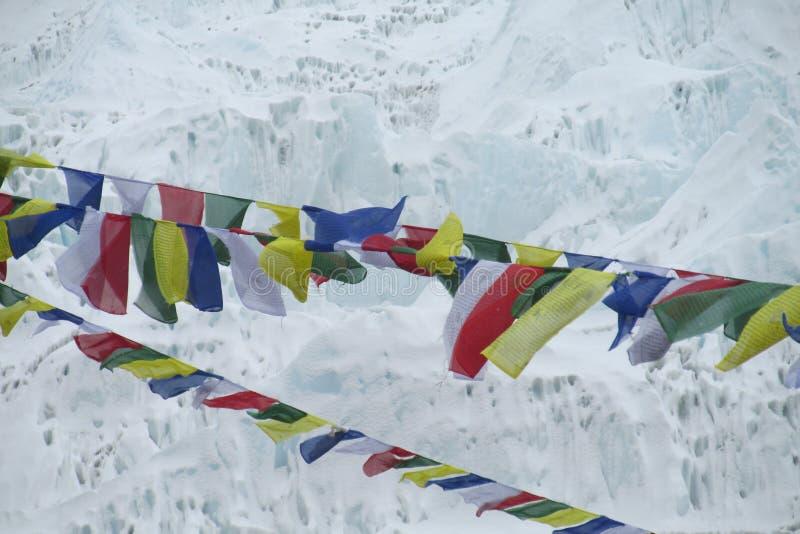 祷告旗子在迁徙在喜马拉雅山山的尼泊尔 库存照片