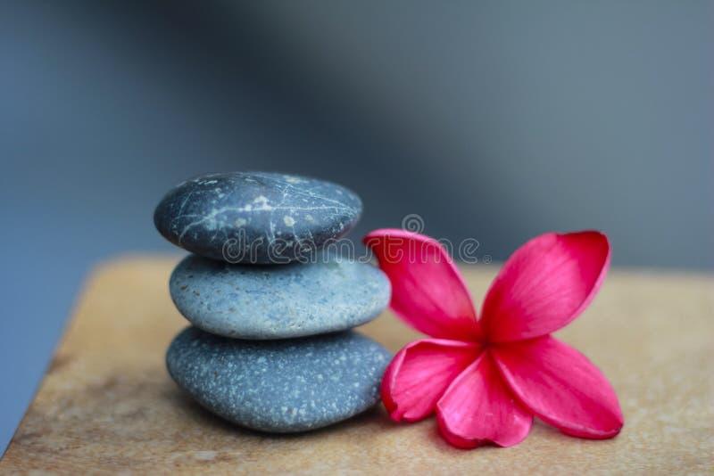 禅宗向温泉扔石头 库存照片