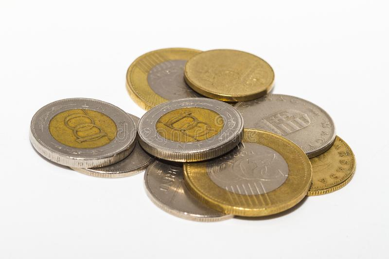 福林标志:Ft;代码:HUF是匈牙利的货币 在被隔绝的白色背景的硬币 库存图片