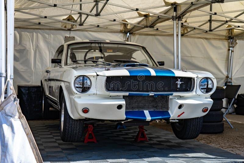 福特谢尔比GT 350在montjuic精神巴塞罗那电路车展的眼镜蛇野马 库存图片