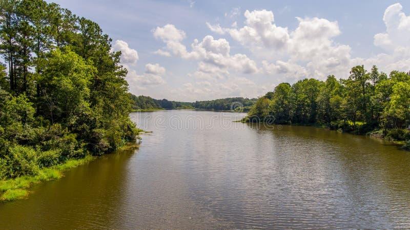 福瑞斯特湖池塘在达芬妮,阿拉巴马2019年7月 免版税库存图片