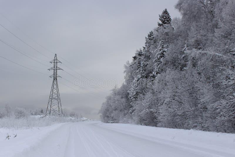 离开的阴沉的冬天路 库存照片