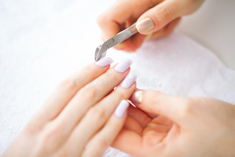 秀丽和关心 有完善的修指甲的美好的妇女` s手 美容院的一名妇女执行做法 温泉修指甲 库存图片