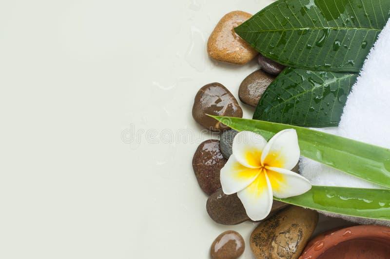 秀丽和温泉设置了与在白色的花 免版税库存照片