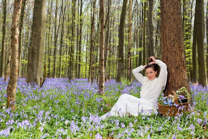 秀丽在会开蓝色钟形花的草森林里 库存照片