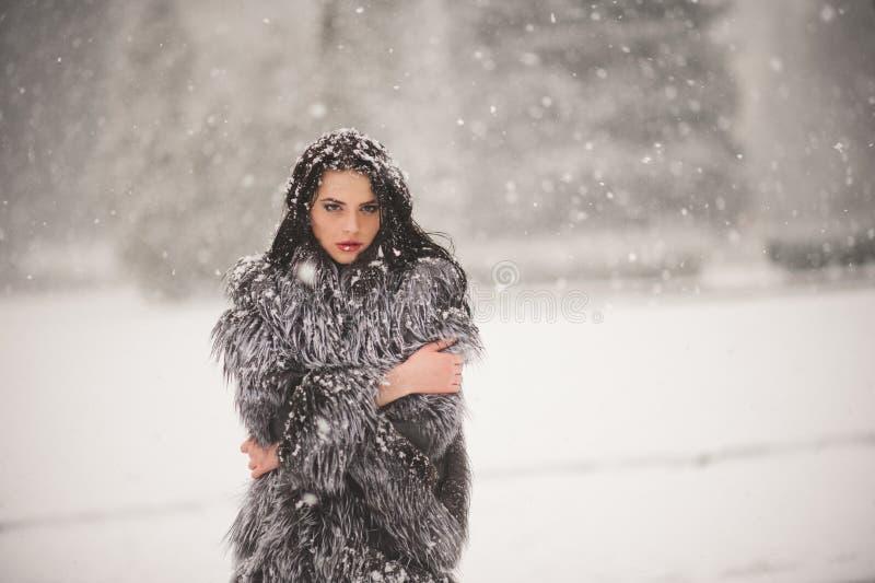 秀丽女孩冬天画象有雪的 库存图片